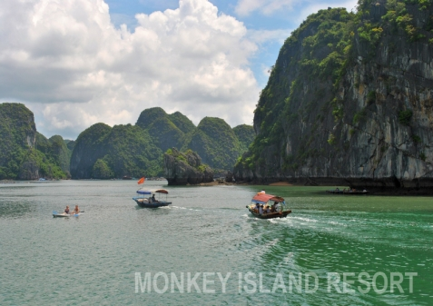 Visit Lan Ha bay on small boat
